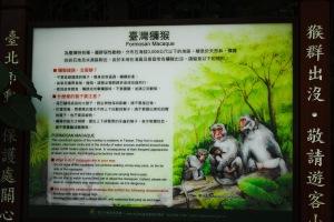Macaque Information
